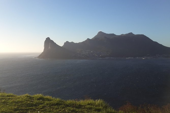 Cape Peninsula: Day Tour from Cape Town