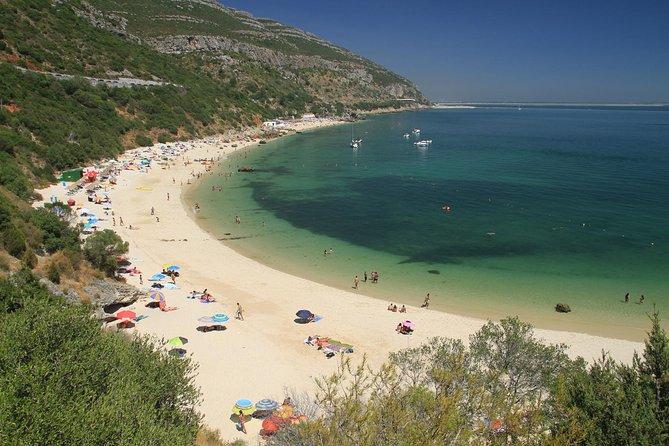 Full Day Private Tour - Arrábida Secret Beaches and Azeitão Wine Region