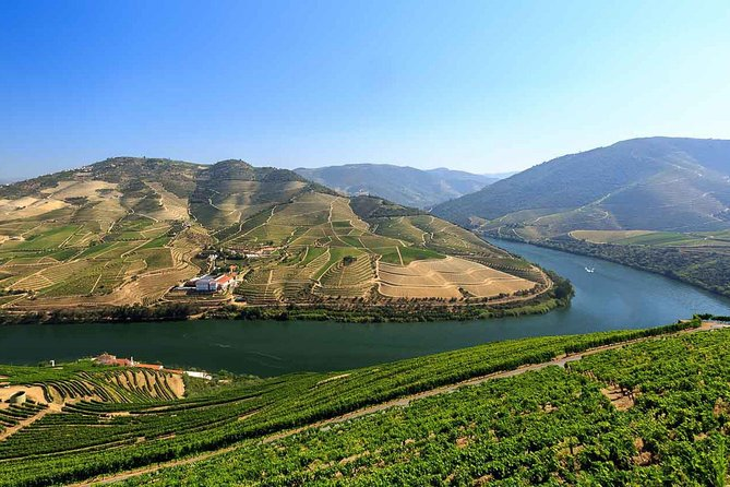 Douro Wine Tour Including 3 Wineries and Lunch to Small Group
