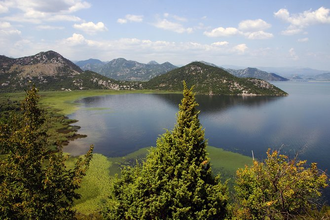 Day tour to Skadar Lake from Kotor Port photo 1