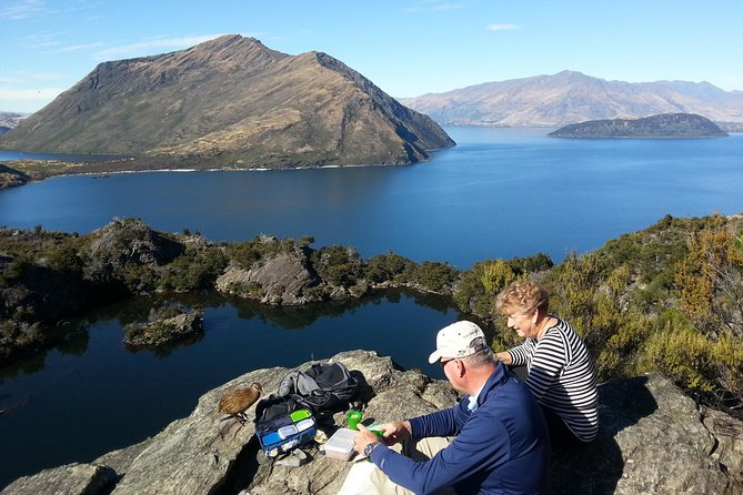 Wanaka Nature Encounter: Lake Cruise and 4WD Safari