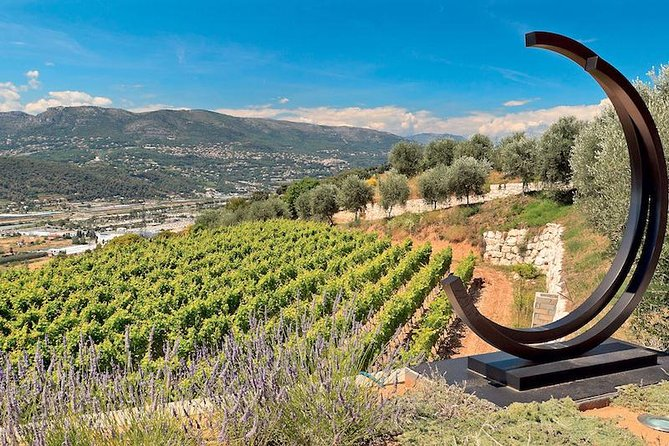 Provence Organic Wine Small Group Half Day Tour with Tastings from Nice