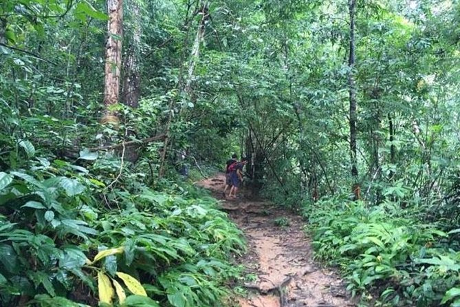 Trekking at the Monk Trail and Doi Suthep Temple Private Tour