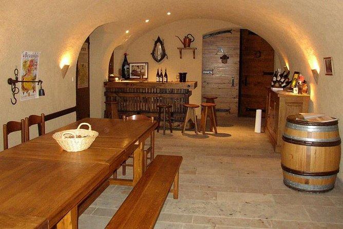 4-Hour Small-Group Beaujolais Wine Tasting Tour from Lyon
