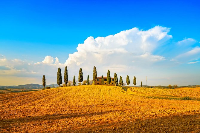 Best of Tuscany Hill Towns semi-private full day tour (Siena & San Gimignano) photo 4