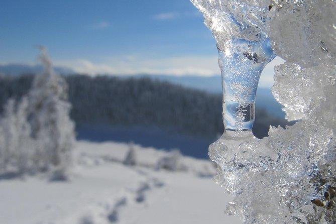 Snowshoeing on Trebevic Mountain from Sarajevo
