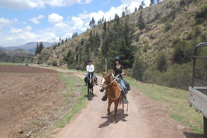 Horseback Riding Cusco: Experience the Peruvian Paso Horses