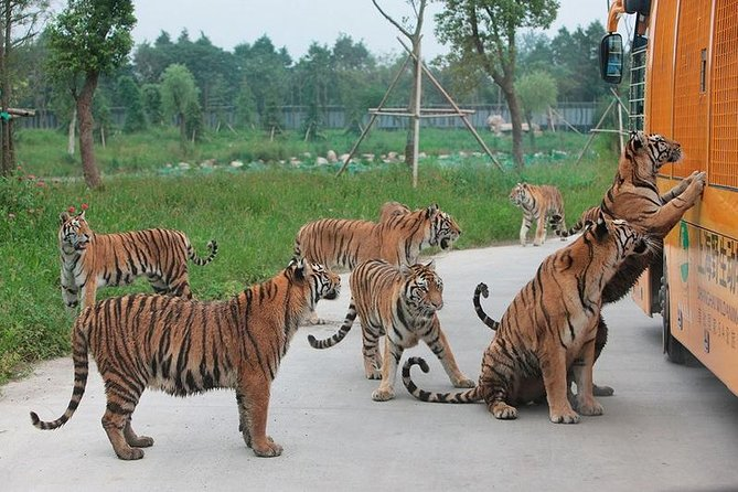 Badaling Wildlife World Private Tour from Beijing