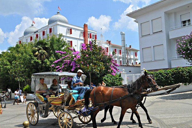 Full-Day Istanbul Princes' Islands Tour Included Horse Carriage From Istanbul