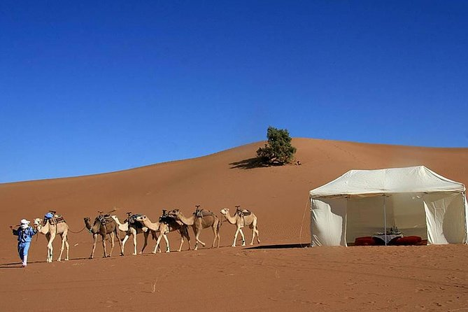 Desert Tour: Private 3-Day Trip from Marrakech to Merzouga With Camel Ride
