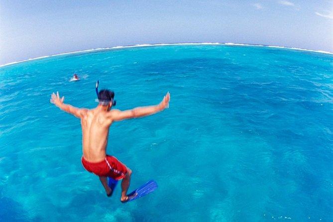 Snorkel at Cades Reef