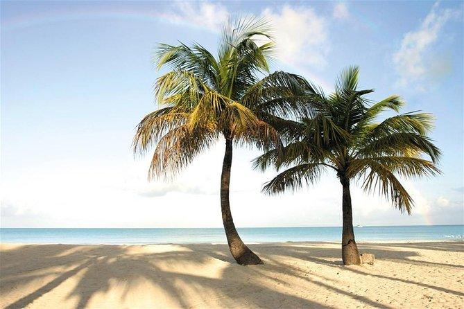 A vida é um rastro de praia!