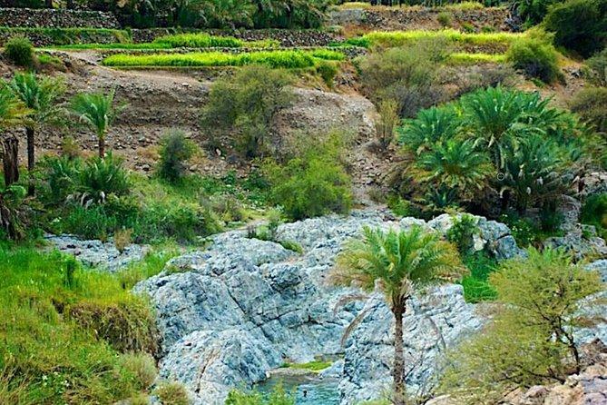 Private Overnight Tour to the Al Batinah Region