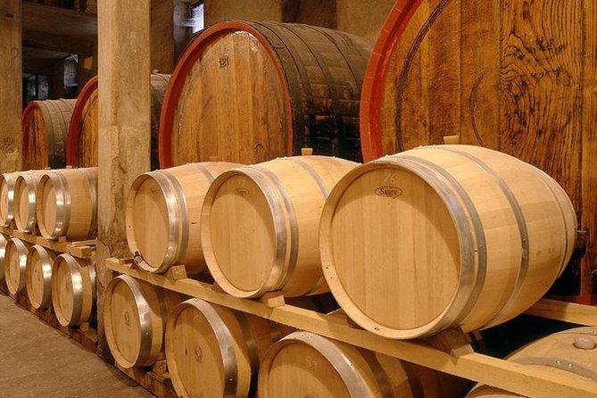 Valdobiaddene Sparkling Wine Tour from Venice