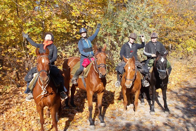 Private Horse Riding near Budapest