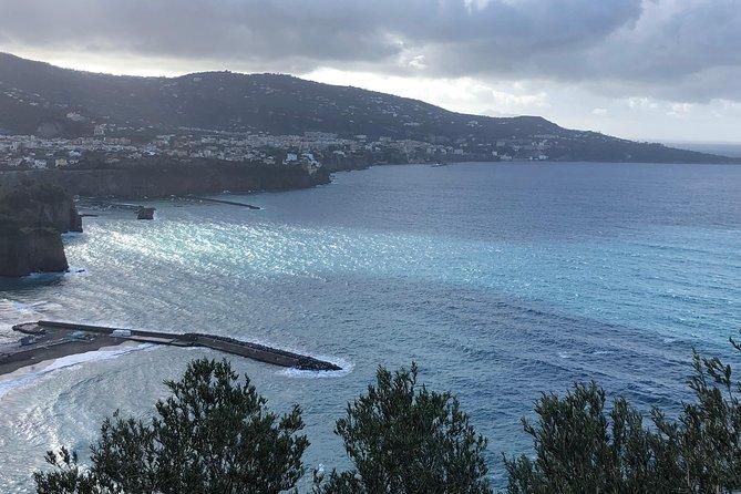 Naples Shore Excursion: Excursion en bateau privé de Capri, Sorrento et Positano