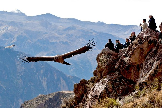 Condor Lookout Point Hike in Chonta from Cusco photo 1