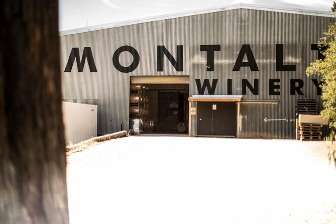 Montalto Vineyard: Behind-the-Scenes Winery Tour with Gourmet Lunch