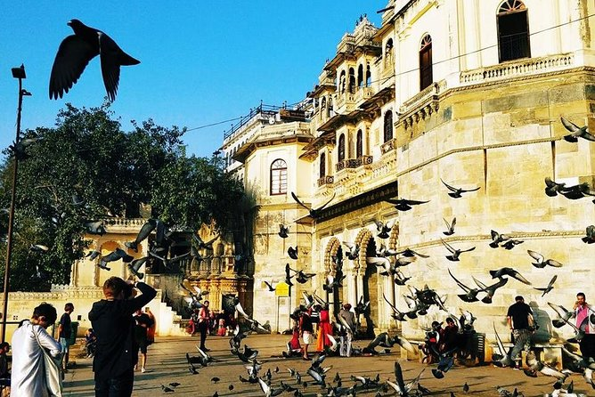 Private Highlighted Guided Udaipur Sightseeing by Car , Foot and By Boat