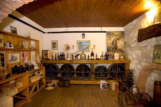 Peljesac Wine Private Day Trip from Dubrovnik