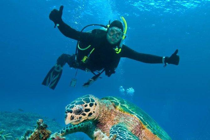 Nassau Shore Excursion: 2-Tank Dive Adventure