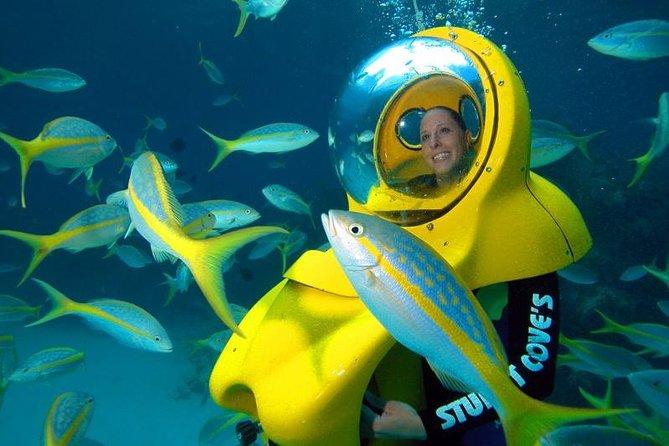 Nassau SUB Bahamas-Abenteuer