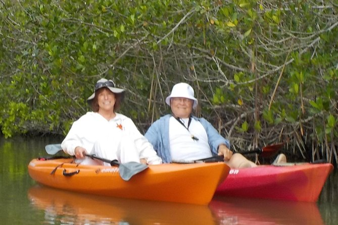 Self-Guided Kayaking Manatee and Dolphin Tour photo 3