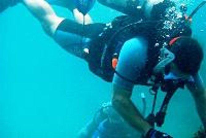 サー・フランシス・ドレイク島全日スキューバ・ダイビング・アドベンチャー