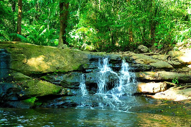 Soberania National Park Day Trip from Panama City