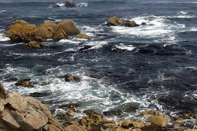 Private Tour in Monterey, Carmel and 17-Mile Day Tour from San Francisco