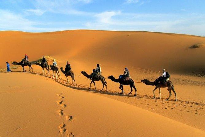 2 days shared group desert tour from marrakech