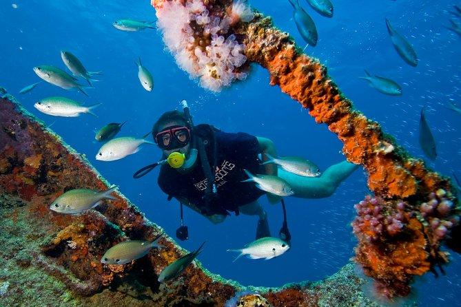 Aruba Red Sail Sports One or Two Tank Scuba Dive