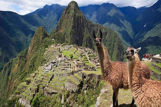 7-Day Peru Deep Dive: Lima, Cusco, Sacred Valley, and Machu Picchu Tour