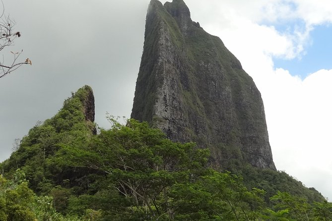 Moorea Three Coconuts Trail Guided Hike photo 6