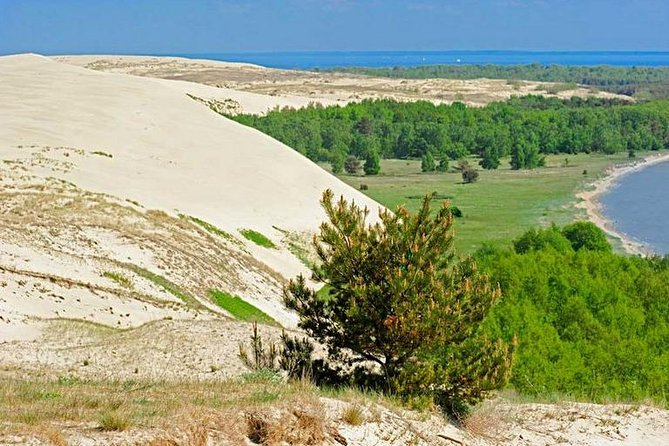 Curonian Spit - The Road to the dunes Day Trip from Kaliningrad