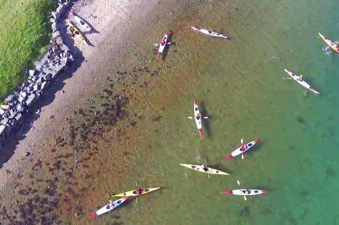 Guided kayak tour in Herdla