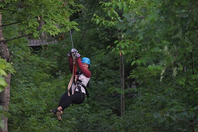 Wildman Zip Tour