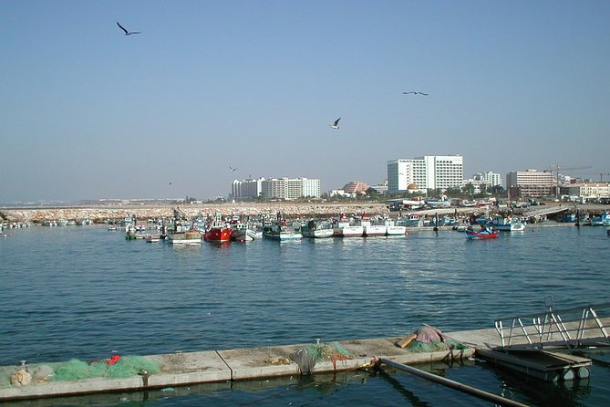 Quarteira Market and Marina Vilamoura Half Day Tour