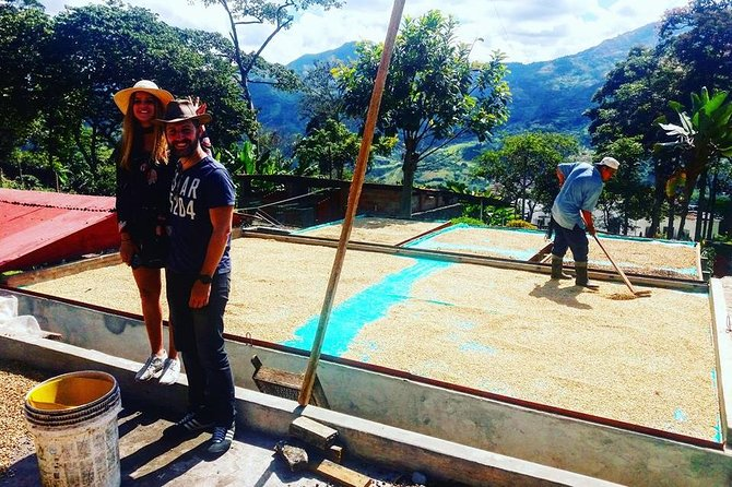 Guatape coffee tour express colombia