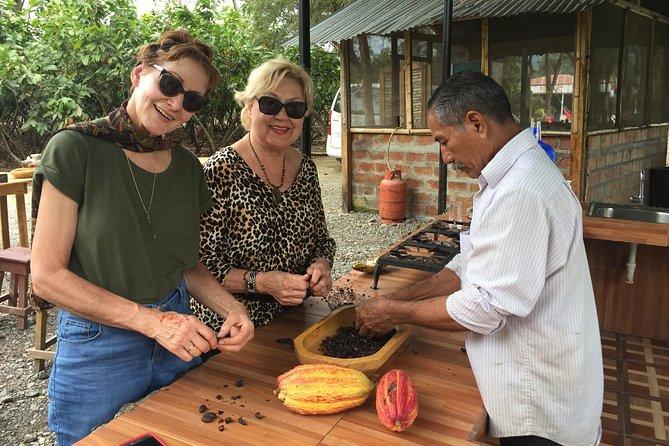 Cocoa farm & Chocolate making Tour