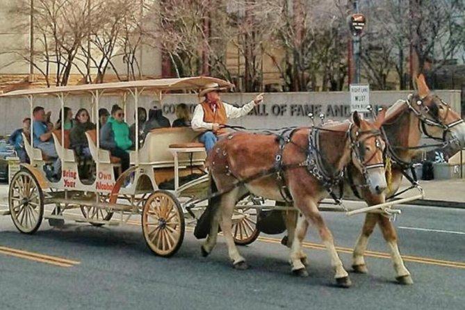 Tour privado: BYOB Horse Carriage Pub Crawl