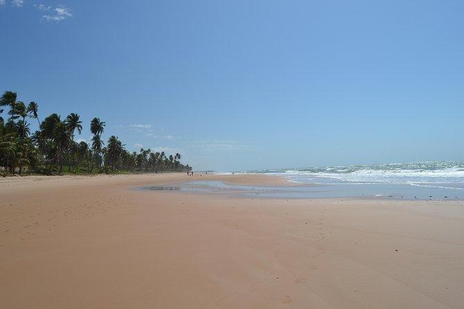 Jaua Beach Hike Tour from Abrantes