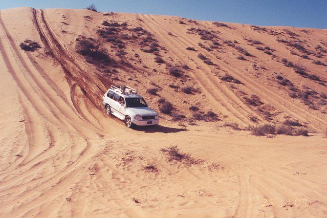 Desert Safari to Wahiba Sands and Wadi Bani Khalid from Muscat