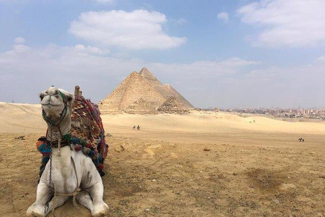 Egypt Shore Excursion Alexandria Port Full Day Giza pyramids, Sakkara & Memphis