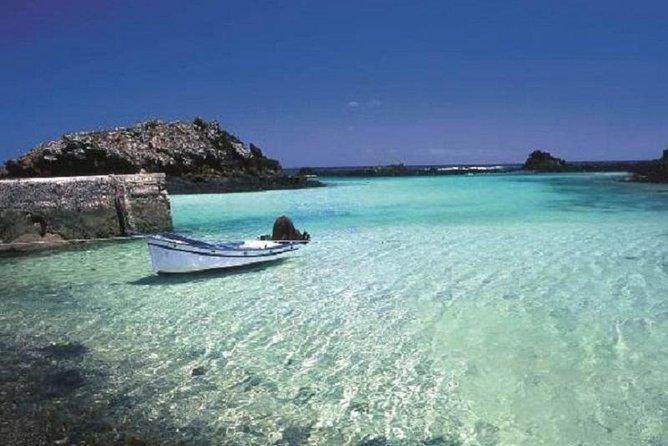 Croisière en catamaran à fond de verre à Fuerteventura, Lanzarote et Los Lobos incluant le déjeuner