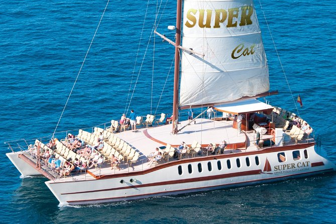 Dolphins Watching and Coastal Catamaran Sailing Cruise