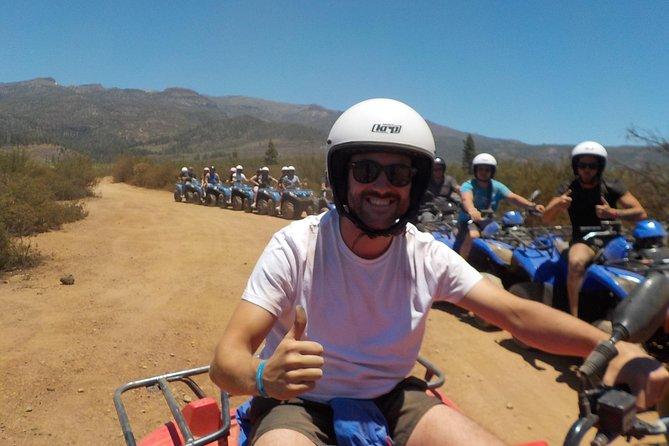 3-Hour Quad Bike Forest Ride from Playa de las Américas