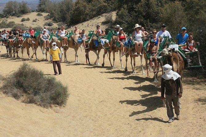 Camel Riding in Maspalomas Dunes