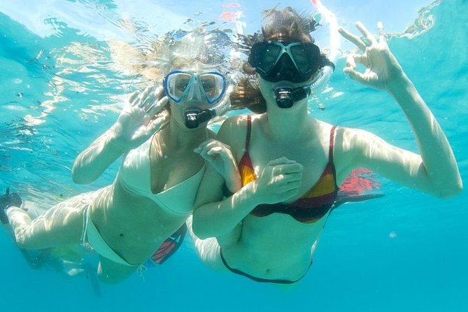 Snorkeling Tour to the Malgrats Islands by boat