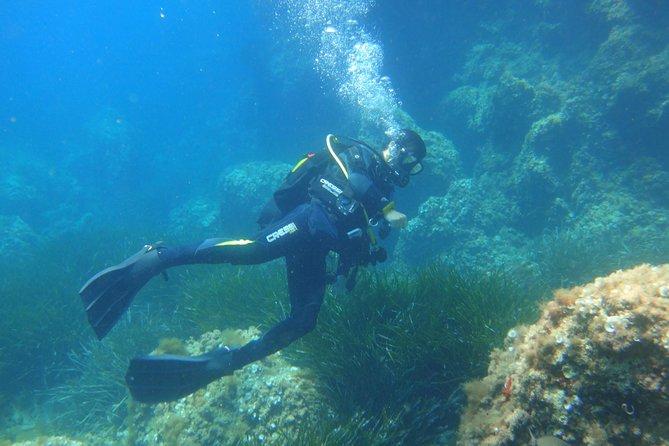 Beginner's Dive in Bay of Palma